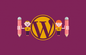WordPress-mulitple-authors