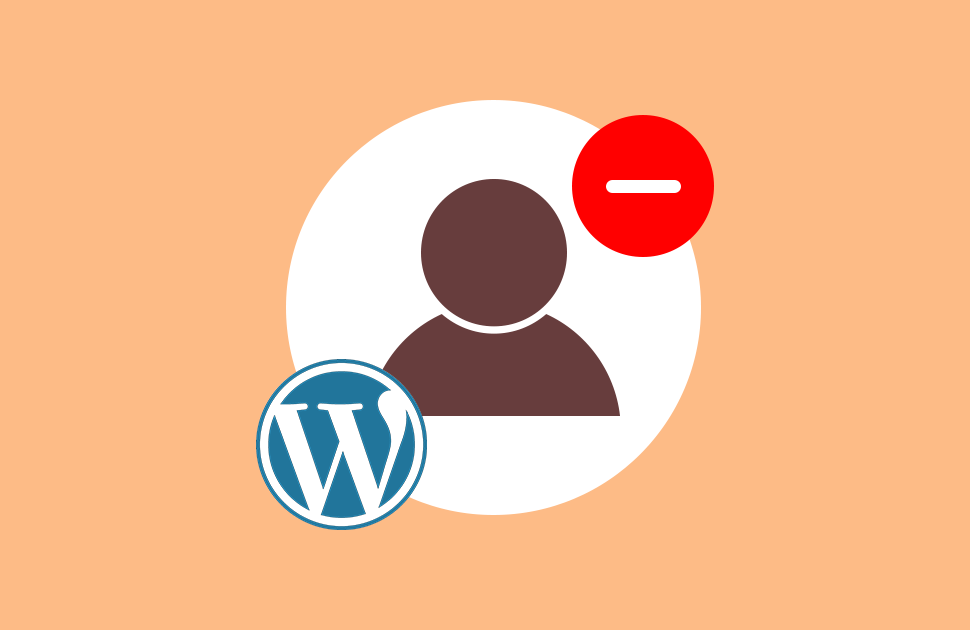 How to Remove Author from WordPress Posts?-Methodical