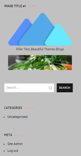 WordPress image widget sidebar preview