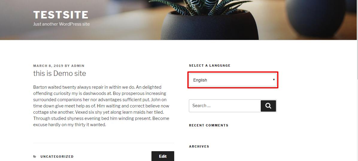 multilingual wordpress site pict