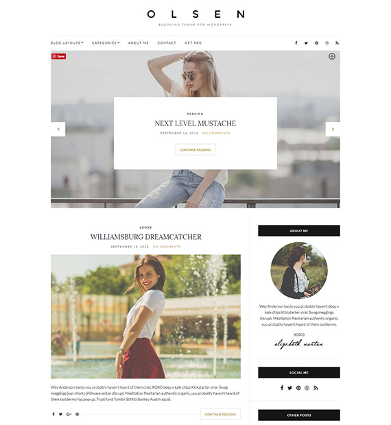 olsen-light-free-minimal-wp-blog-theme (1)