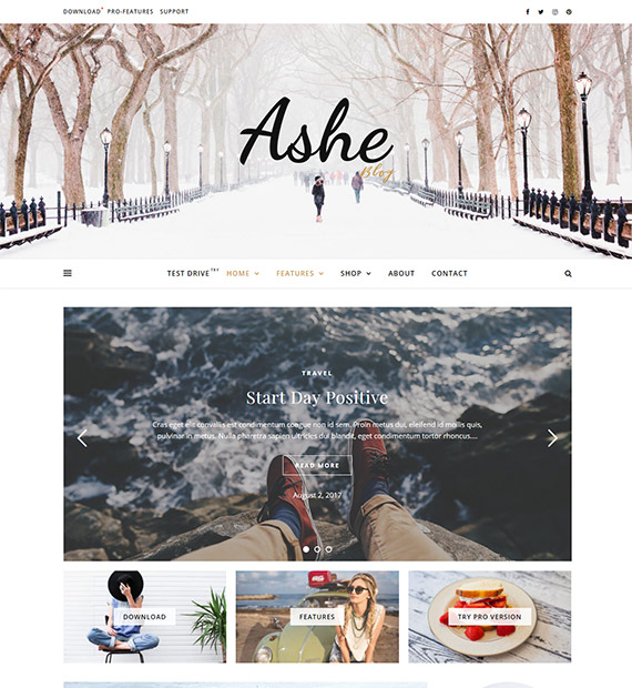 Ashe-Blog-WordPress-Theme