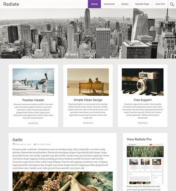Radiate-free-WP-blog-theme