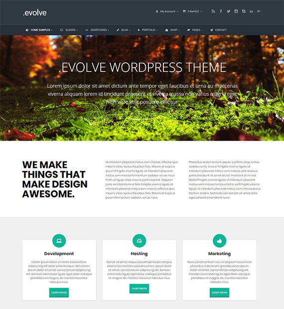 Evolve-eCommerce-Business-WordPress-Theme