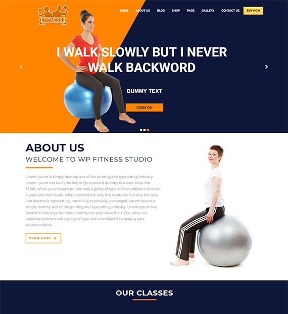 The-WP-Fitness-WordPress-Business-Theme