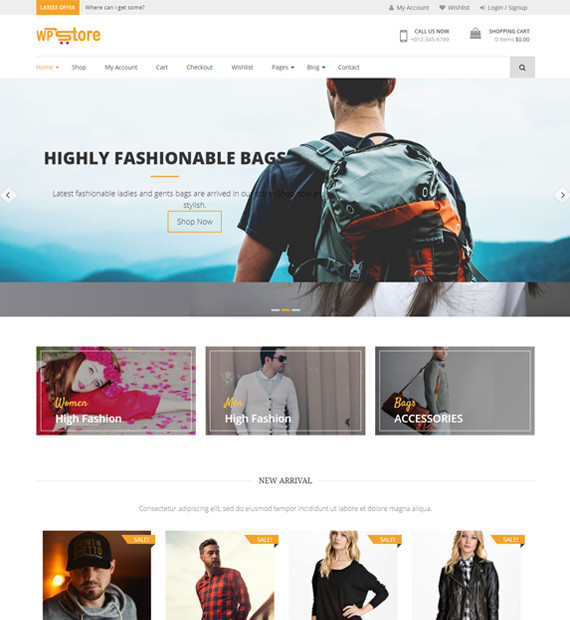 WordPress-eCommerce-theme-WP-Store
