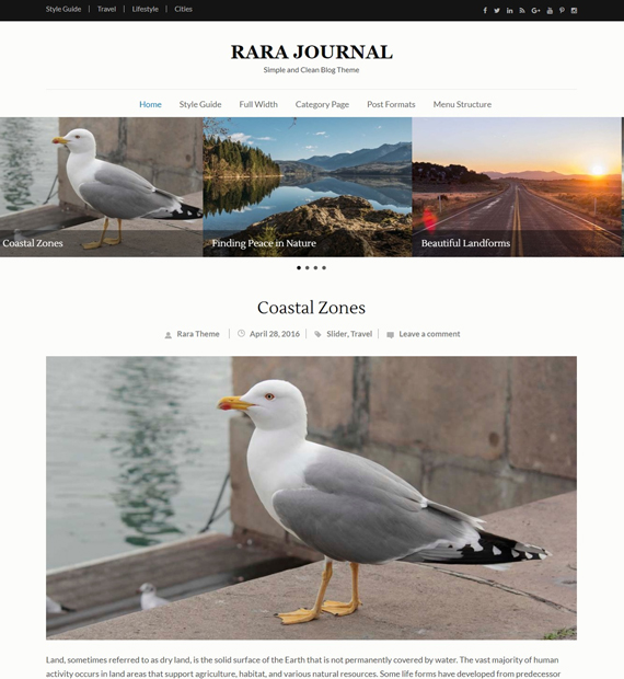 wordpress blog theme rara journal