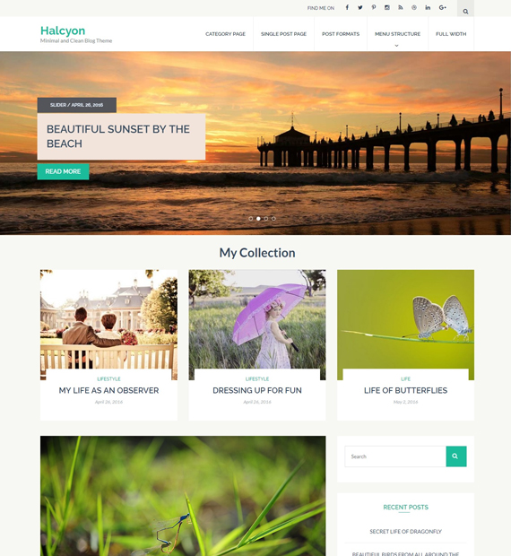 haylcon-wordpress-blog-theme