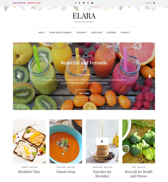Elara-Free-WordPress-Blog-Theme