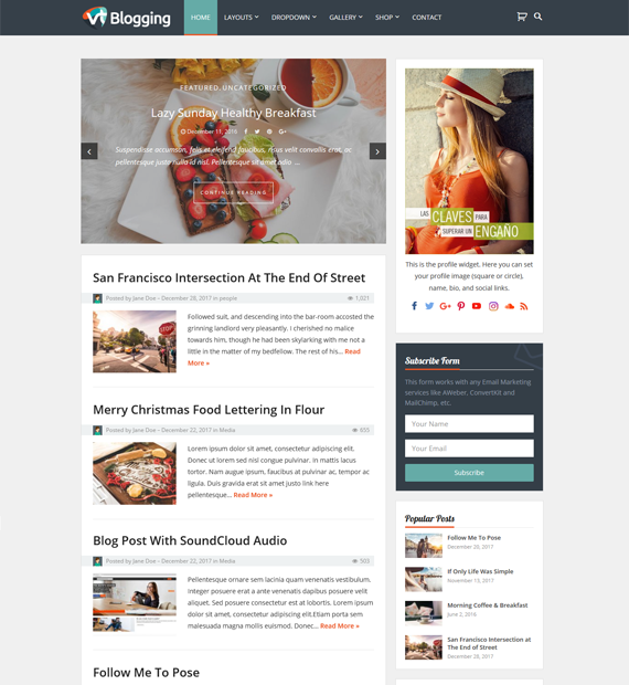 VT Blogging WordPress Blog Theme