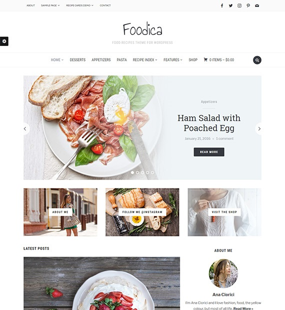 Foodica WordPress Blog Theme
