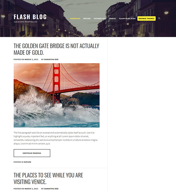 Flash-Blog-WordPress-Blogging-Theme