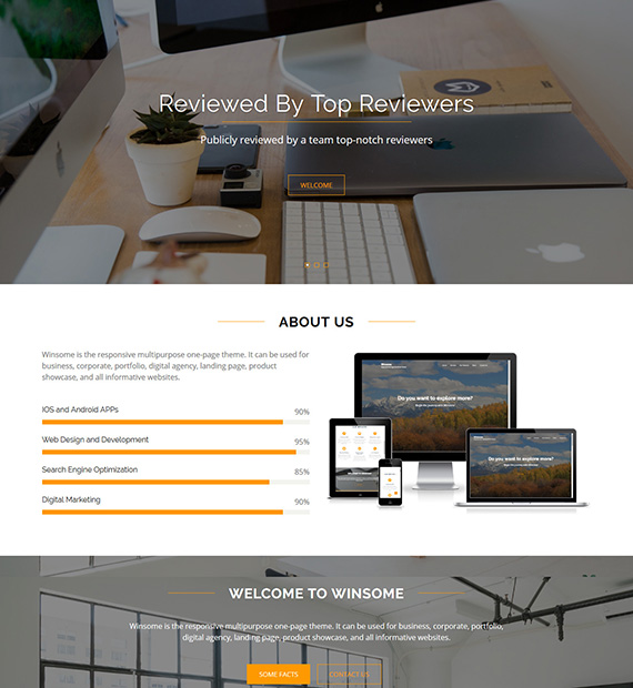 winsome-wordpress-multipurpose-theme