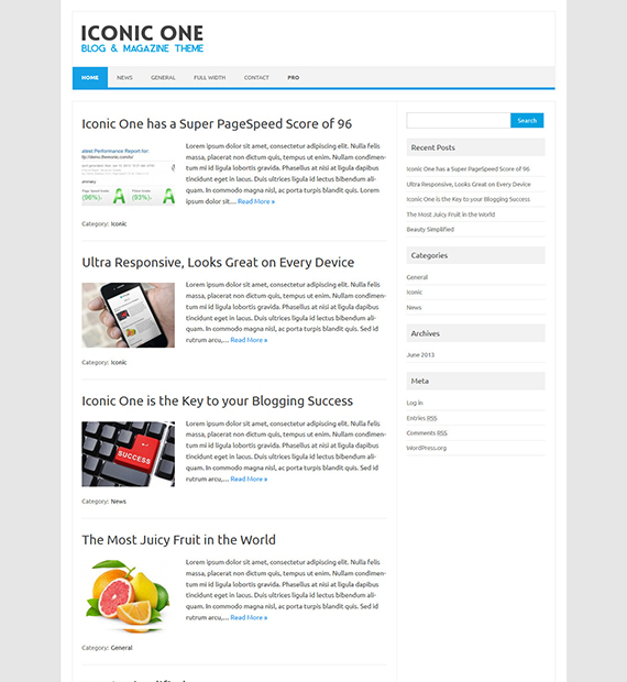 iconic-one-wordpress-blogging-theme