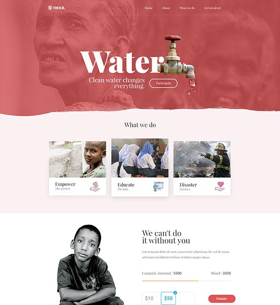 nexa-grattitude-wordpress-non-profit-organization-theme