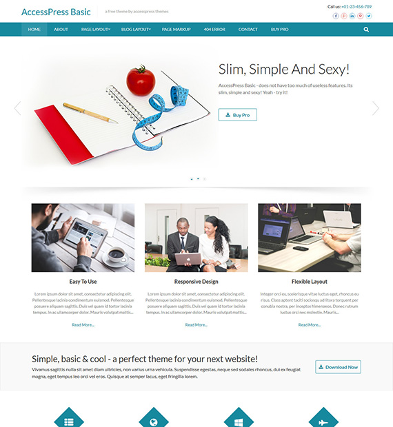 accesspress-basic-wordpress-business-theme