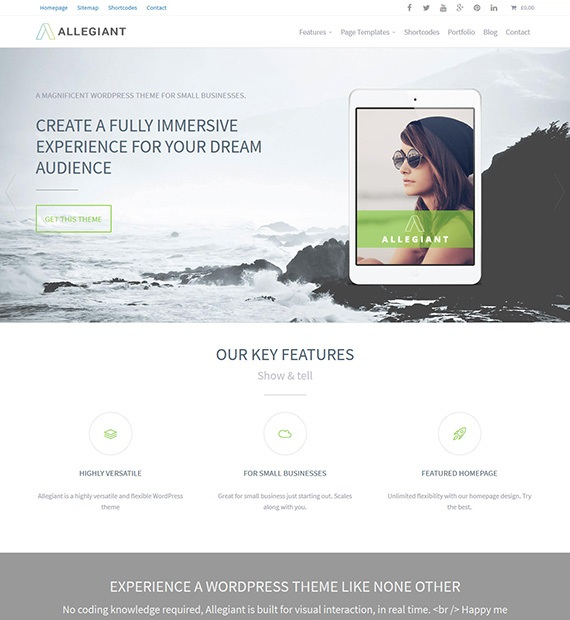 Allegiant-WordPress-Free-Business-Theme