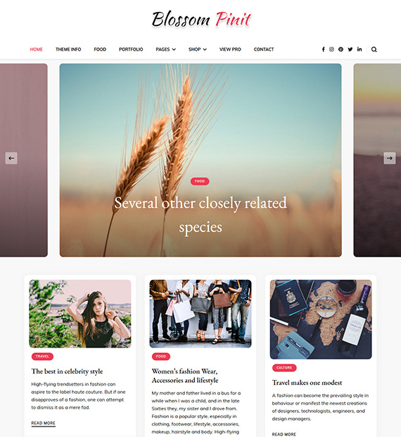 Blossom-PinIt-WordPress-Blogging-Theme