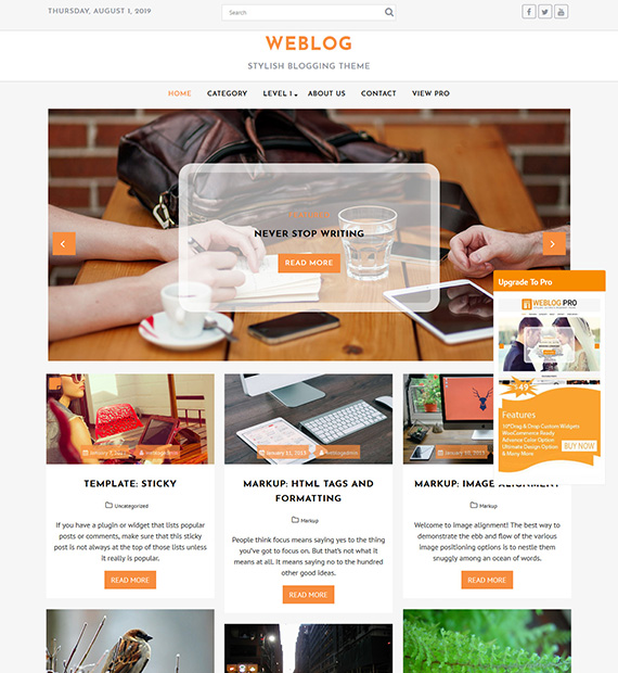 Weblog WordPress Blogging theme
